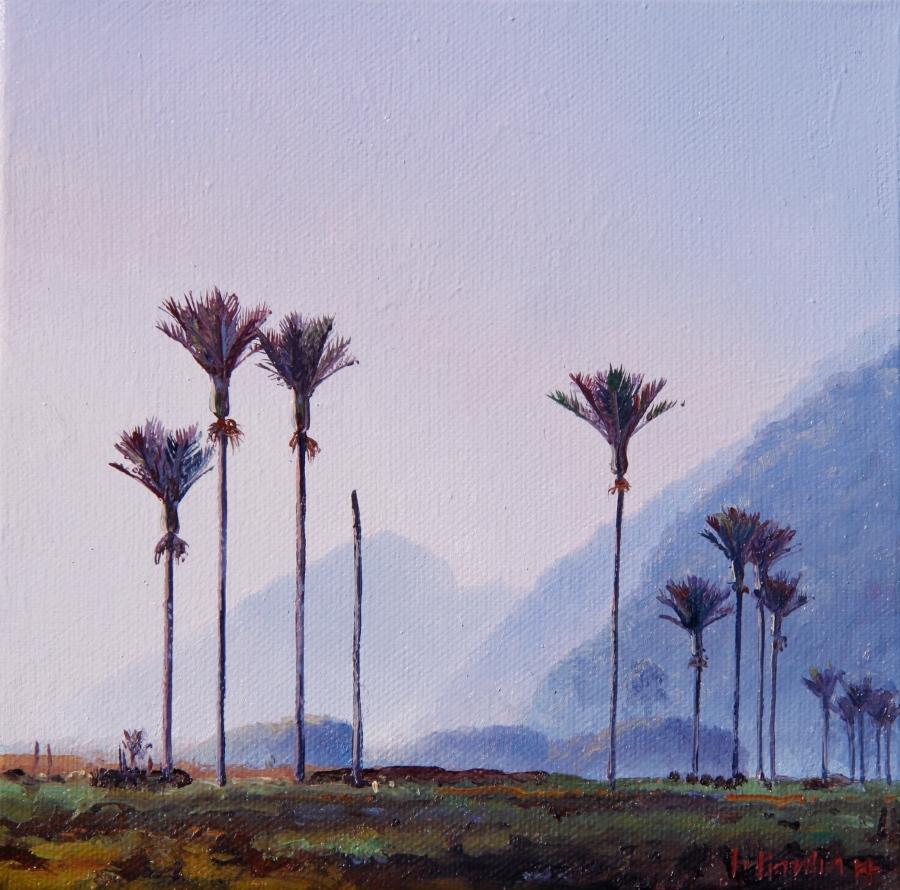 Canvas300