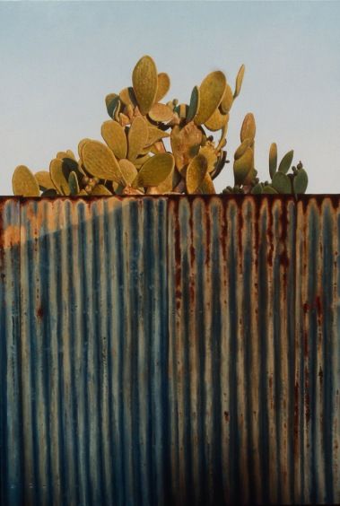 """""""Prickly on the Other Side"""" - oil on board, 750x500, 1993, SOLD"""