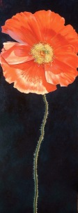 """""""Kia Kaha - Stand Tall"""",oil on canvas, 90x30cm, SOLD"""
