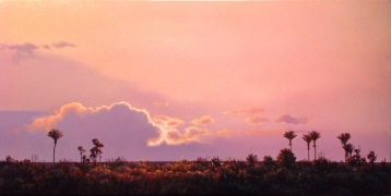 """Into the Light"" - Punakaiki West Coast, oil on canvas, 37 x 75 cm, US$2,965"