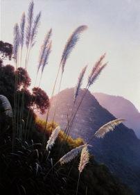 """Facing the Wind - Piha"" oil on canvas, 90x60cm, US$4,075,https://ianhamlin.co/2015/05/27/facing-the-wind"