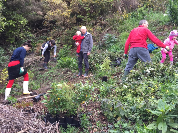 The Friends of Buckley Road Reserve planting 2015